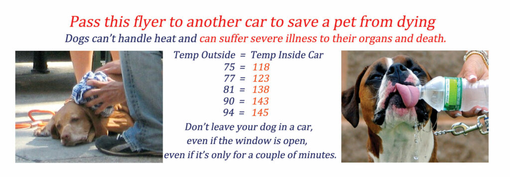 If you see a dog in a car in hot weather, save their life by putting a flyer on their car.