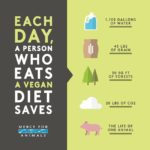 Vegan Diet Saves Animals and The Environment