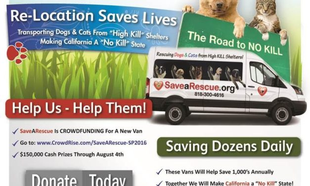 SaveARescue are helping abused animals by relocating them to no-kill shelters