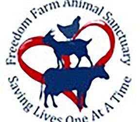 Freedom Farm Animal Sanctuary is Helping Abused Animals