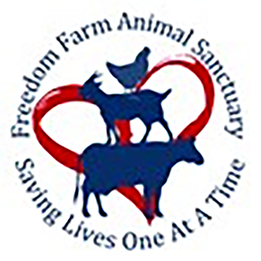 Freedom Farm Animal Sanctuary is Helping Abused Animals